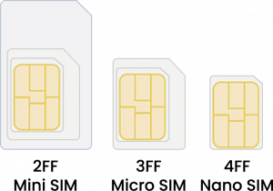 sim formats